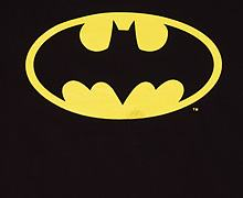 Ladies Classic Batman Logo T-Shirt from Urban Species